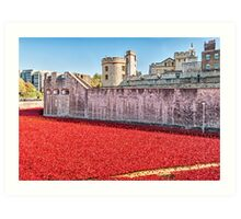 Poppies At The Tower Art Print