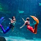 Two Mermaids Spotted in Myrtle Beach by TJ Baccari Photography
