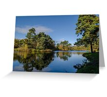Waterside reflection Greeting Card