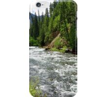Canoe Break along the  Malheur River, Oregon iPhone Case/Skin
