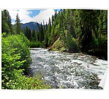 Canoe Break along the  Malheur River, Oregon Poster