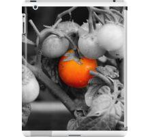 Macro photo of cherry tomatoes in an English garden - Black and White iPad Case/Skin