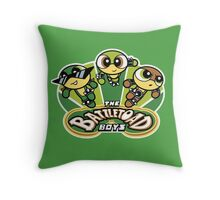 The Battletoad Boys Throw Pillow