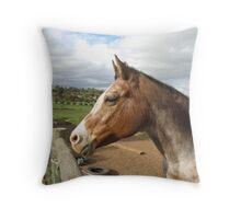 'SQUINTING IN THE LATE AFTERNOON SUN!' 'Muggles' Throw Pillow