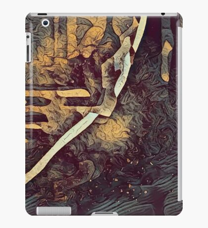 Graphic R4 iPad Case/Skin