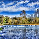 Spring River Rapids by Rick  Friedle