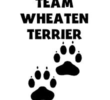 Team Wheaten Terrier by kwg2200