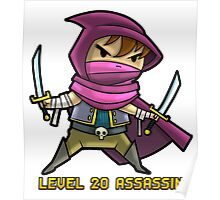 Level 20 Assassin Poster