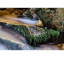 Flowing  Photographic Print