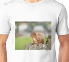 Red Squirrel on Rock Unisex T-Shirt