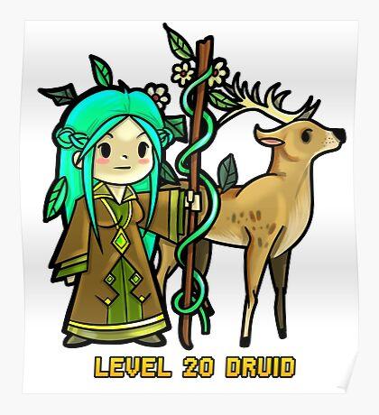 Level 20 Druid Poster