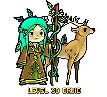 Level 20 Druid Photographic Print