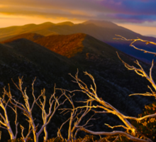 Mt Hotham Brush Sticker