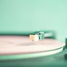 The Pink Record by Caroline Mint