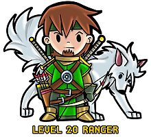 Level 20 Ranger by WarpZoneGraphic