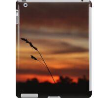 Wild Serenity iPad Case/Skin