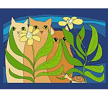 Three Cats, Two Flowers, One Snail and A Ladybug Photographic Print