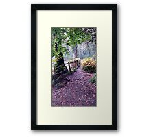 British Woodland in Autumn - Path into the Trees, with Wooden Fence Framed Print