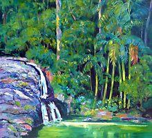 Currumbin Slide , Waterfalls Currumbin Valley by Virginia McGowan