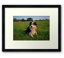 A Grand Day Out. Framed Print