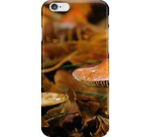 Emerging from the Debris iPhone Case/Skin