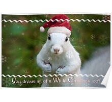 White squirrel Christmas Poster