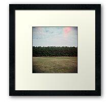 Trees I Framed Print