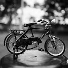 Bicyle Blues by Clare Colins