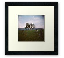 Trees III Framed Print