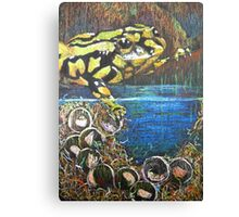 Australian  Corroboree Frog from a Pastel Painting by Heather Holland Canvas Print