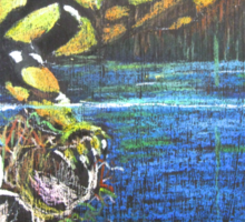 Australian  Corroboree Frog from a Pastel Painting by Heather Holland Sticker