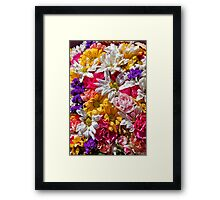 Be like the flower, turn your faces to the sun. Framed Print