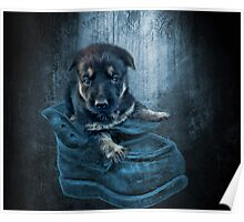 ADORABLE GERMAN SHEPHERD PUPPY IN BOOT PICTURE,PILLOW,TOTE BAG, Poster