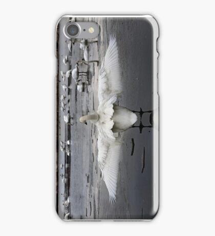 Trumpeter Swans of Heber Springs, AR - 2 iPhone Case/Skin