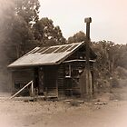 old cabin at Donnelly River Mill by BigAndRed