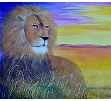 Pride of Africa Photographic Print