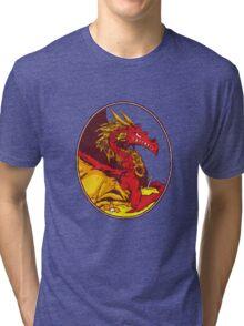 Ancient Red Dragon Tri-blend T-Shirt