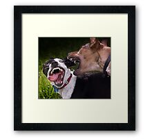 Dogs with game face on .9 Framed Print