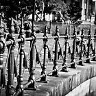 Fenced in by Deborah Clearwater
