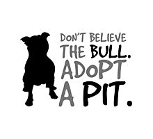 Don't Believe The Bull  Adopt A Pit Photographic Print