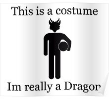 Im Really A Dragon Poster