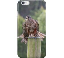 New Zealand Falcon. iPhone Case/Skin