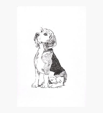 Pen and Ink Beagle Photographic Print
