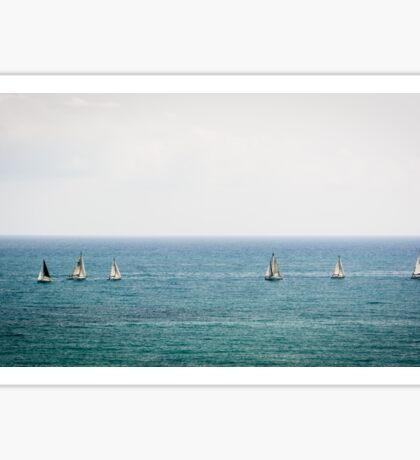 Sailing in good company Sticker