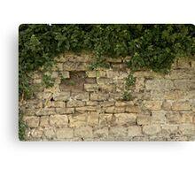 Romancing The Stone ©  Canvas Print