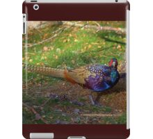The Colourful Pheasant iPad Case/Skin