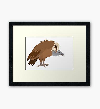 a vulture bird Framed Print