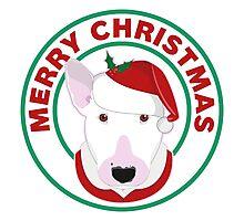Merry Christmas Bull Terrier Photographic Print