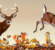 Bucks In Autumn by bhymer