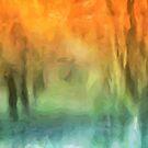 Autumn Colours by John Edwards